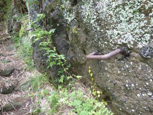 穴観音への道2(岩に打ち込まれた鉄の取っ手)